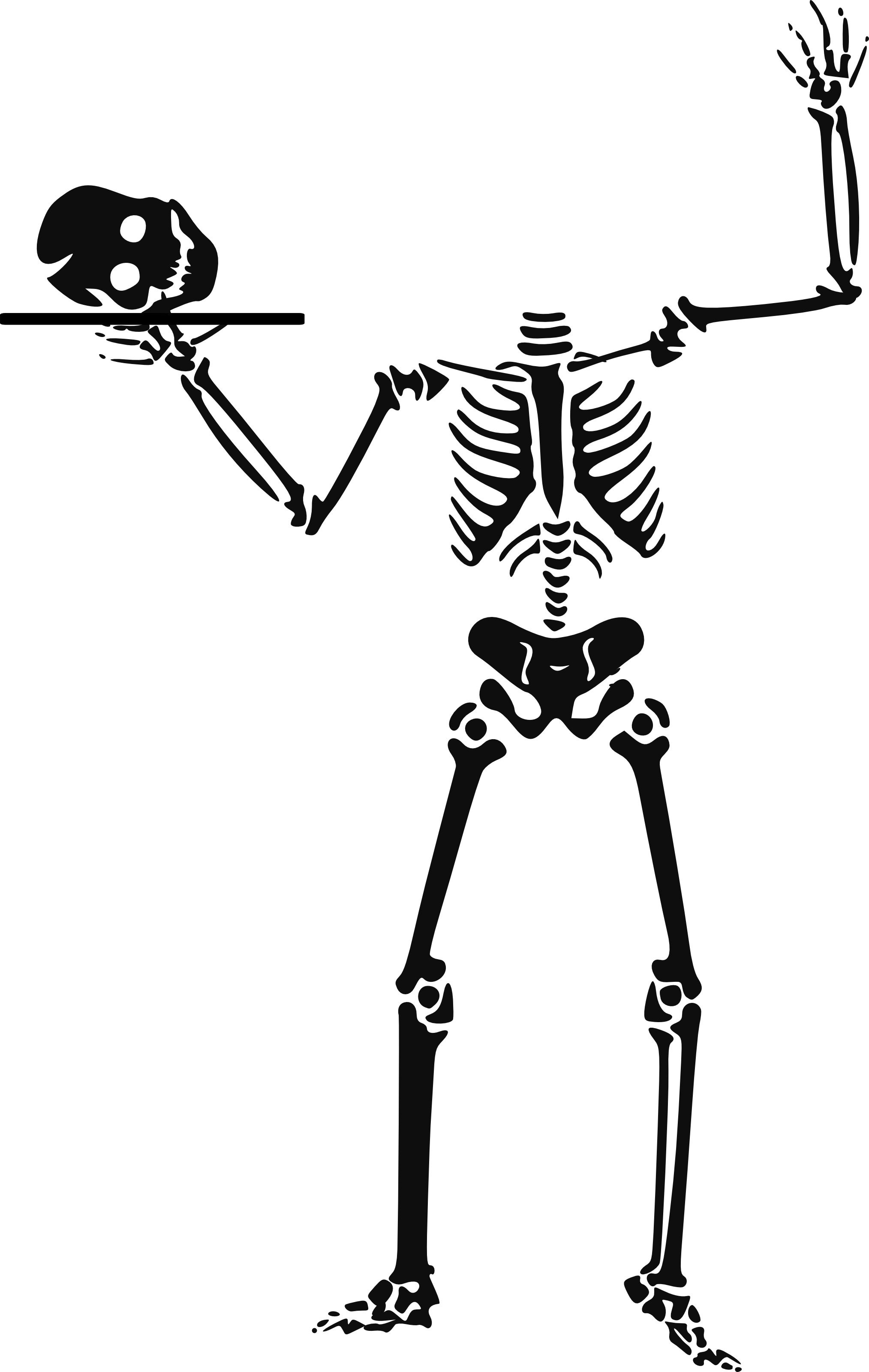 Skelowton clipart graphic library library Halloween Skeleton Clipart | Clipart Panda - Free Clipart Images graphic library library