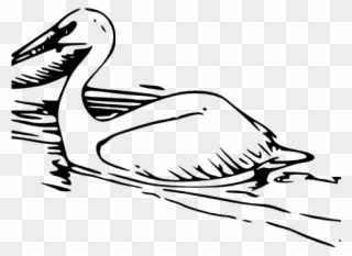 Halo pelican clipart graphic freeuse Free PNG Pelican Clipart Clip Art Download - PinClipart graphic freeuse