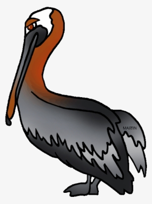 Halo pelican clipart clipart transparent library Pelican PNG, Transparent Pelican PNG Image Free Download - PNGkey clipart transparent library