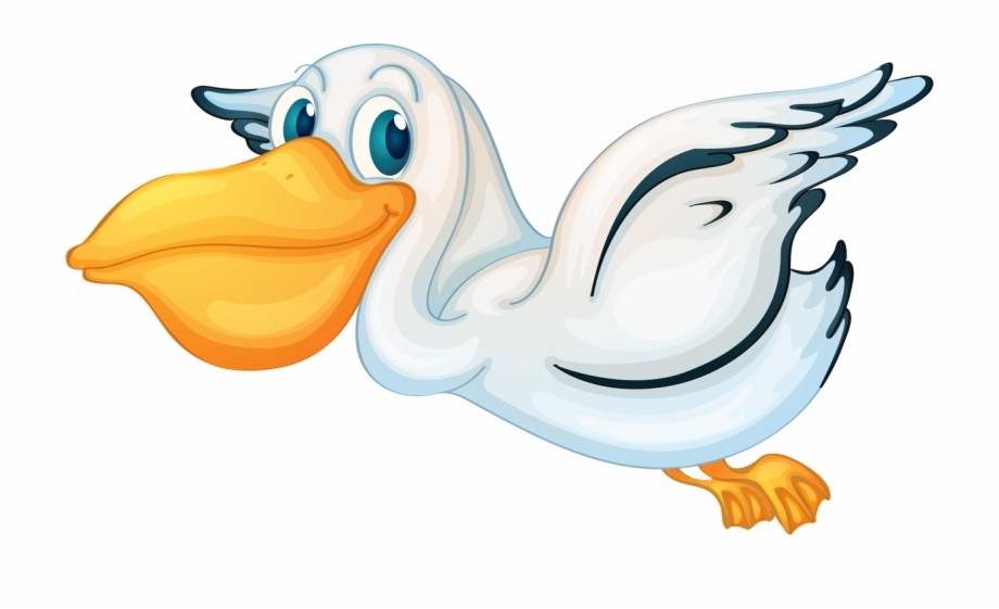 Halo pelican clipart png stock Pelican Cartoon Transparent Background Free PNG Images & Clipart ... png stock