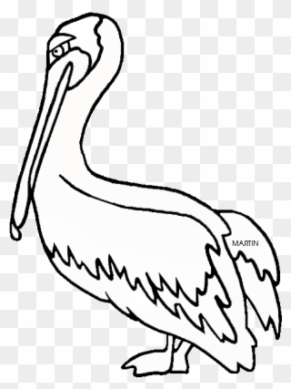 Halo pelican clipart graphic freeuse download Free PNG Pelican Clipart Clip Art Download - PinClipart graphic freeuse download