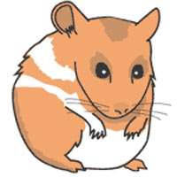 Hamster clipart free clipart library stock Hamster Clipart | Clipart Panda - Free Clipart Images clipart library stock