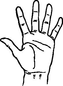 Hand cartoon clip art graphic transparent download Hand 2 Clip Art at Clker.com - vector clip art online, royalty ... graphic transparent download