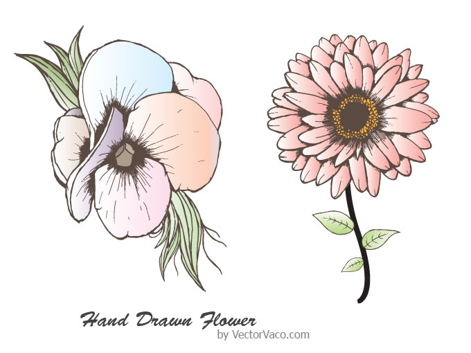 Hand drawn flowers clipart png free stock Free Drawn Flowers, Download Free Clip Art, Free Clip Art on Clipart ... png free stock