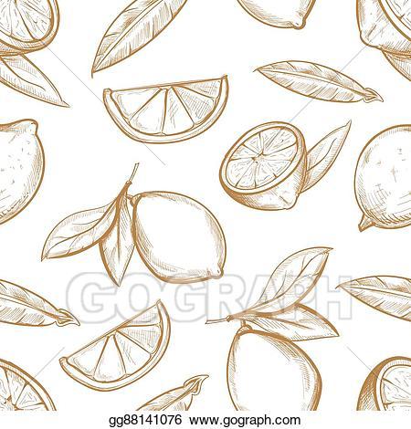 Hand drawn lemon peppermint clipart clip art library download Vector Art - Vector seamless pattern with hand drawn lemons branch ... clip art library download