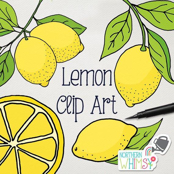 Hand drawn lemon peppermint clipart clipart library download Lemons clipart lemon slice, Lemons lemon slice Transparent FREE for ... clipart library download