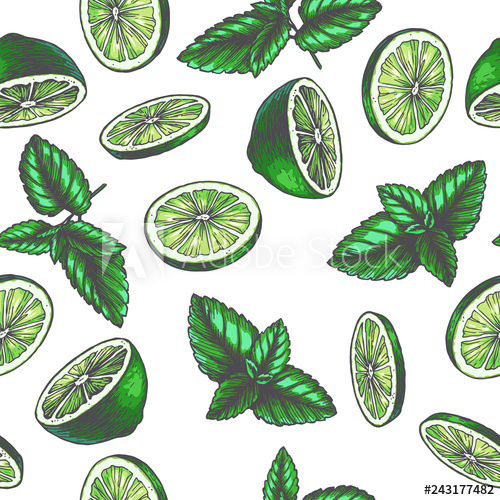 Hand drawn lemon peppermint clipart jpg stock Vector vintage seamless pattern with ingredients for drink. Hand ... jpg stock