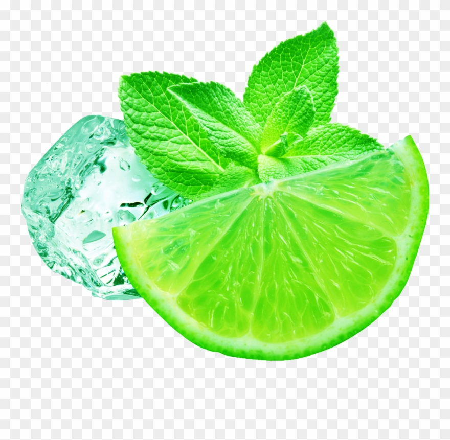 Hand drawn lemon peppermint clipart picture freeuse Juice Iced Peppermint Mint Transprent - Lemon Fresh Png Clipart ... picture freeuse