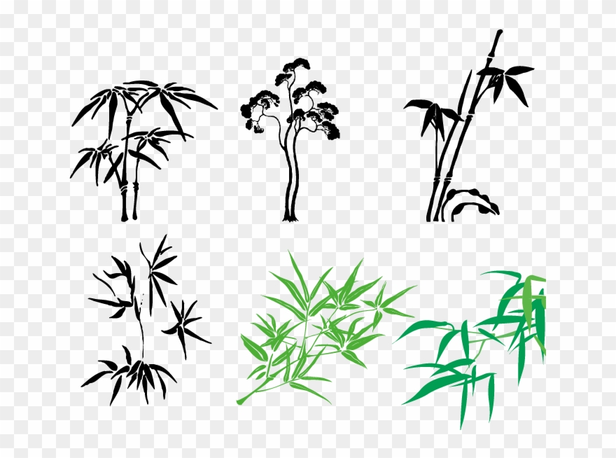 Hand drawn vector clipart graphic freeuse library Twig Vector Hand Drawn - Bamboo Illustrations Vector Clipart ... graphic freeuse library