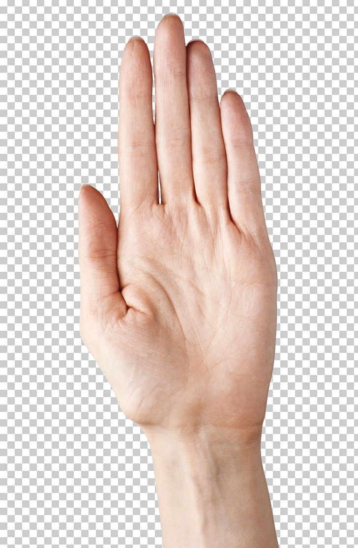 Hand model clipart