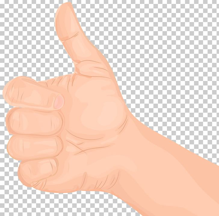 Hand model clipart jpg library library Thumb Hand Model Nail PNG, Clipart, Arm, Clip Art, Clipart, Finger ... jpg library library