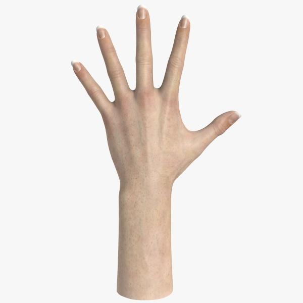 Hand model clipart jpg download Hand Model | Clipart Panda - Free Clipart Images jpg download