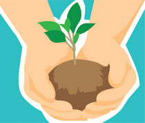 Hands holding plant clipart graphic stock Search Results for seedling - Clip Art - Pictures - Graphics ... graphic stock