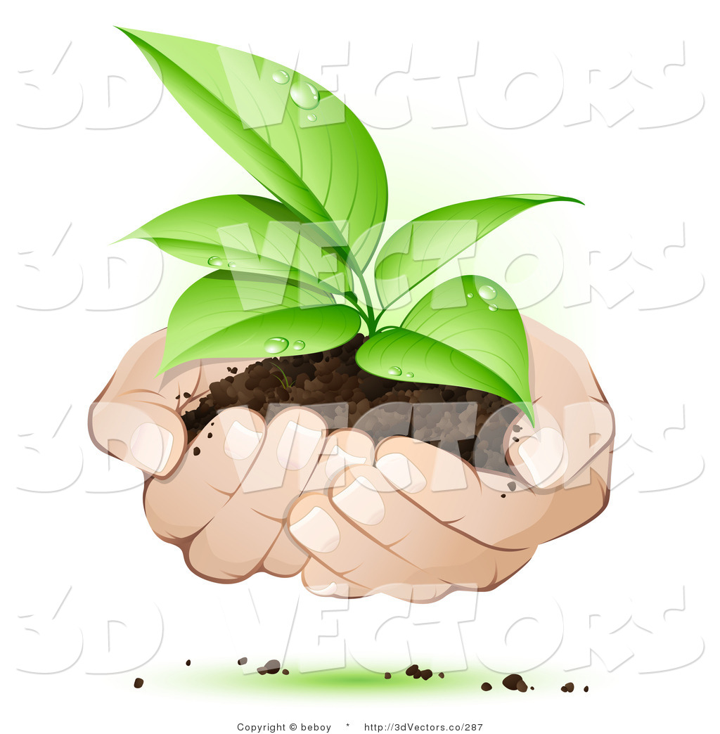 Hands holding plant clipart banner 3d Vector Clipart of White Human Hands Supporting a Sprouting Green ... banner