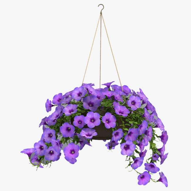 Hanging basket clipart vector freeuse Hanging baskets clipart 7 » Clipart Portal vector freeuse