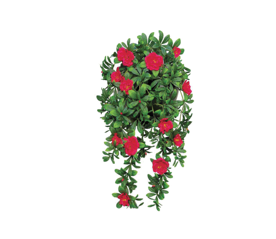 Hanging flower baskets clipart jpg library stock FLOWER PNG FILE by TheArtist100 on DeviantArt jpg library stock