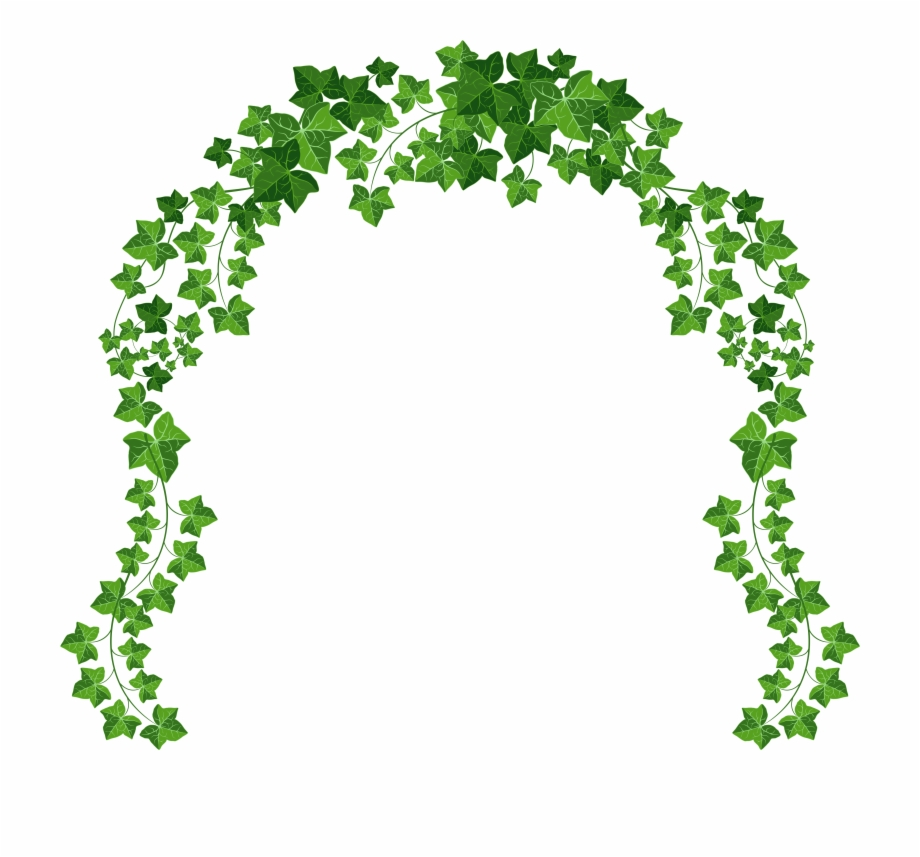 Ivy vine curved frame clipart png royalty free library Free Vine Download Best On X Ivy - Transparent Background Vine Png ... png royalty free library