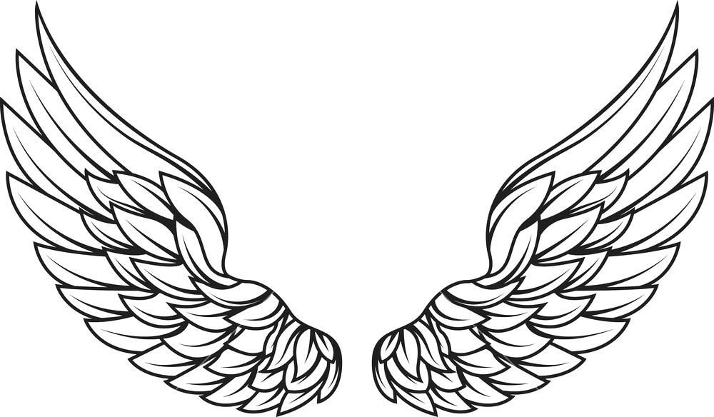 Harley davidson wings clipart transparent wings vector – GodShelters transparent