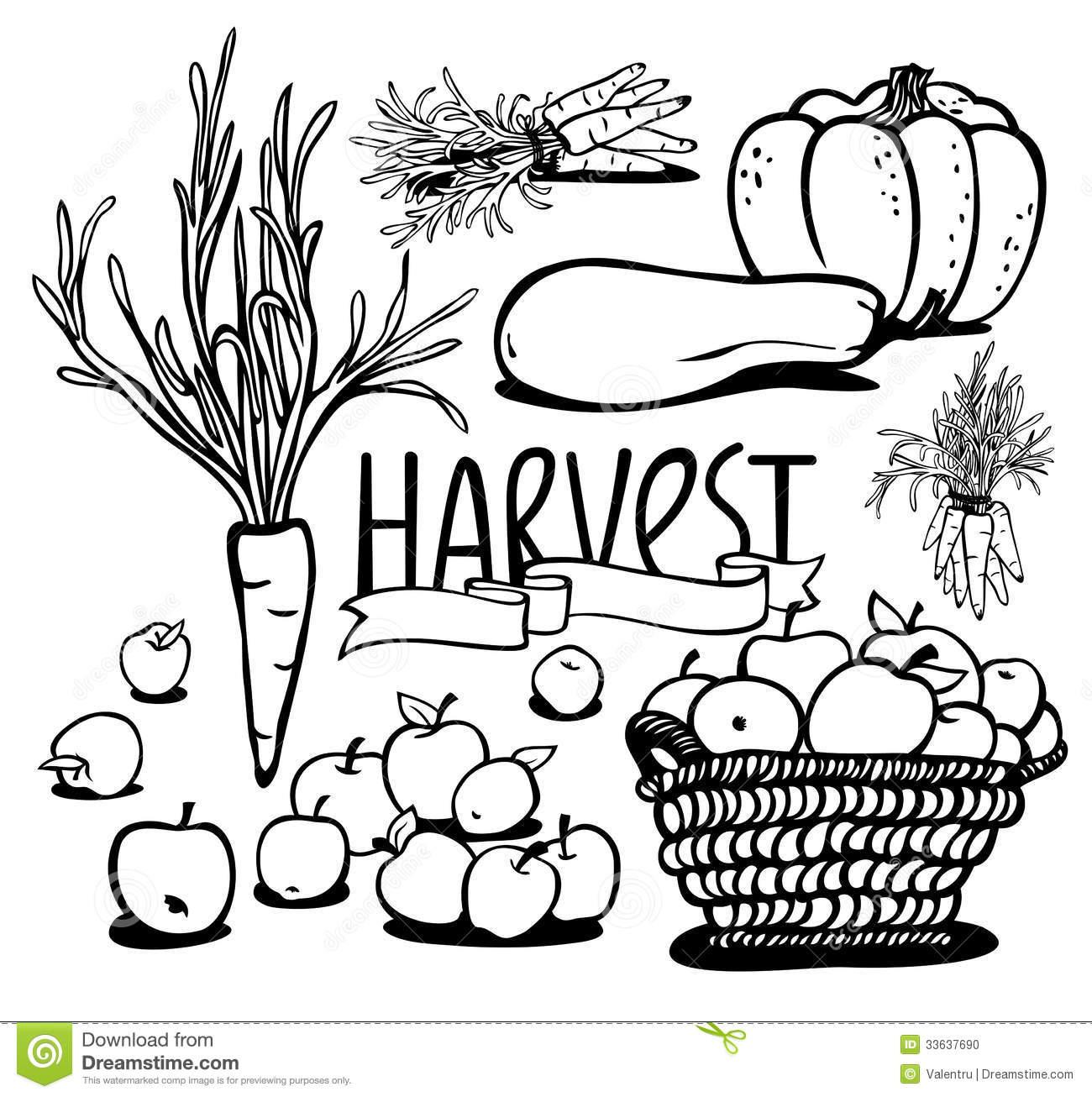 Harvest clipart black and white clip transparent library Harvest clipart black and white » Clipart Station clip transparent library