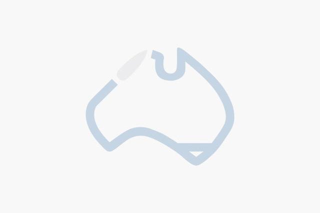 Hastings deering clipart ltd vector library stock Tropical North Queensland | Cairns - Superyacht Australia Members vector library stock