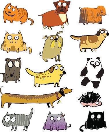 Haustiere clipart graphic stock Witzige Haustiere UND Andere Tiere premium clipart - ClipartLogo.com graphic stock