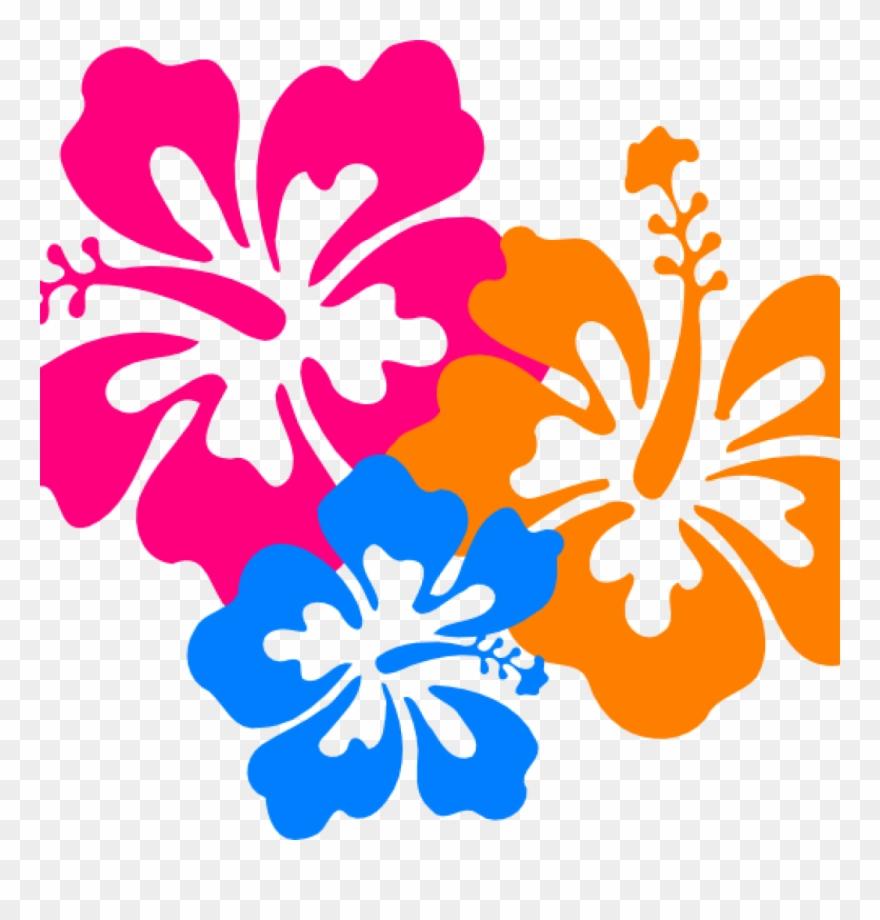 Hawaiian flower clipart borders jpg stock Hawaiian Border Clip Art Hawaiian Flower Clip Art Borders - Png ... jpg stock