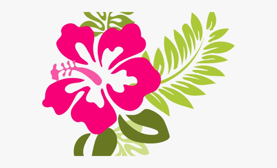 Hawaiian hibiscus flower clipart freeuse Flowers Borders Clipart Hibiscus - Pink Hibiscus Flower Clipart ... freeuse