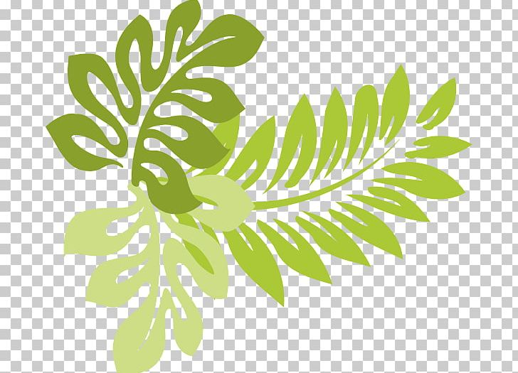 Hawaiian leaf clipart graphic transparent library Hawaii Leaf PNG, Clipart, Black And White, Branch, Buckeye, Buckeye ... graphic transparent library