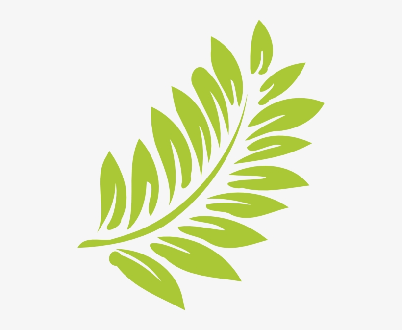 Hawaiian leaf clipart graphic library download Hibiscus Leaf Png Transparent Hibiscus Leaf - Hawaiian Flower ... graphic library download