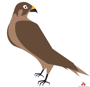 Hawk clipart free banner royalty free Hawk Clipart | Free Images at Clker.com - vector clip art online ... banner royalty free