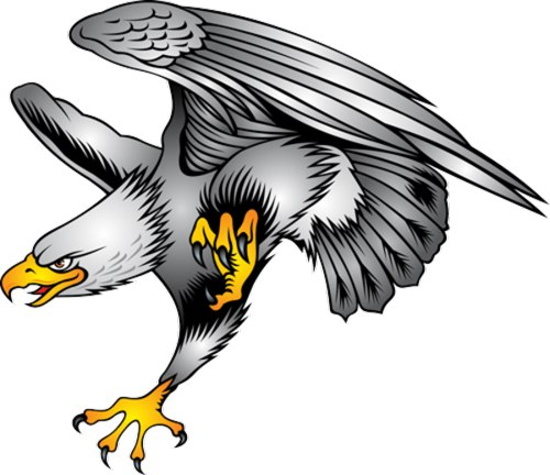 Hawk flying with wings up clipart image royalty free library Falcon Bird Clipart | Free download best Falcon Bird Clipart on ... image royalty free library