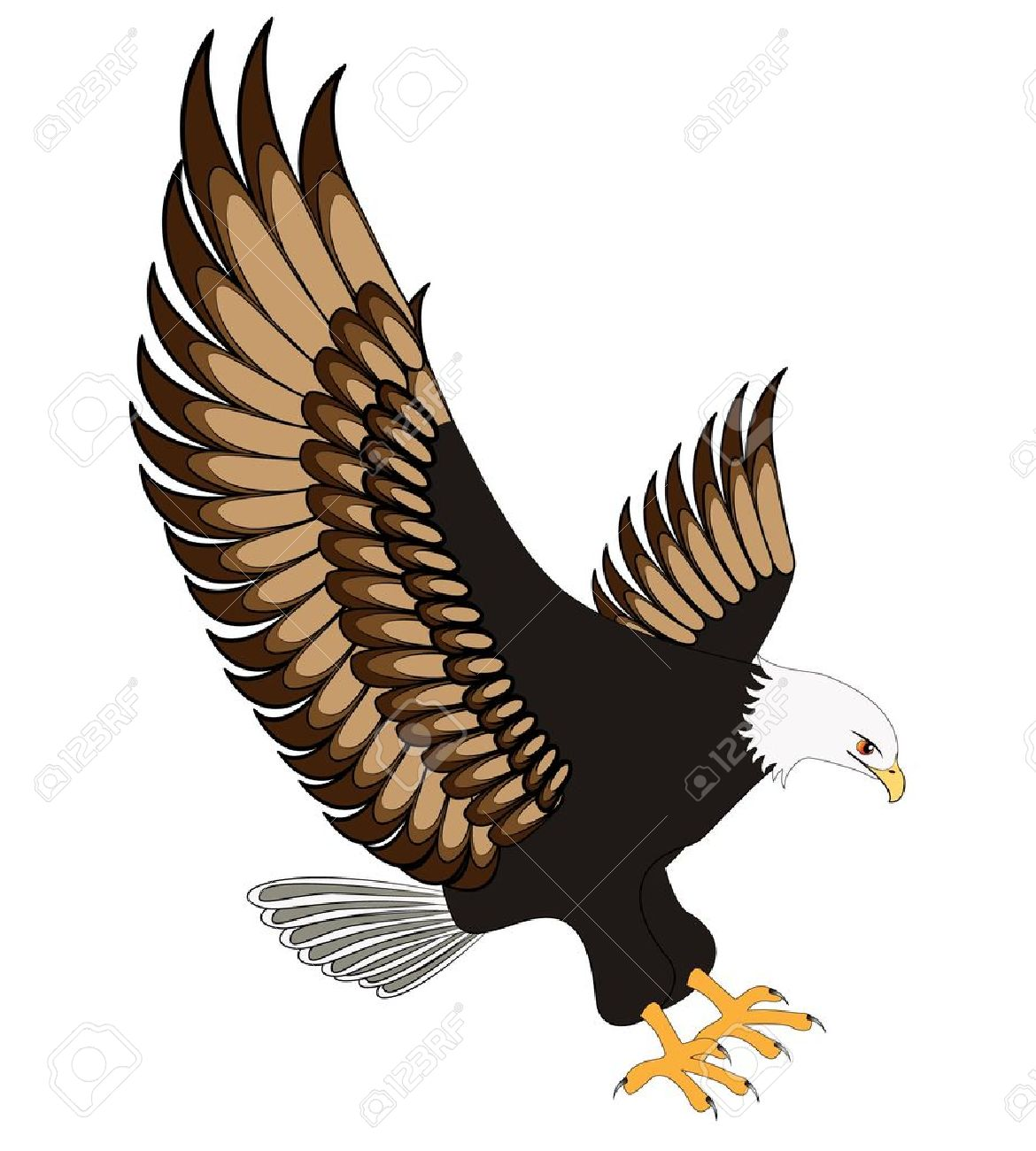 Hawk flying with wings up clipart graphic freeuse stock Flying Hawk Drawing at PaintingValley.com | Explore collection of ... graphic freeuse stock