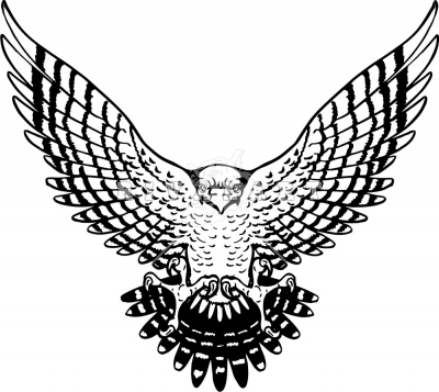 Hawk flying with wings up clipart png download Falcon Bird Clipart | Free download best Falcon Bird Clipart on ... png download