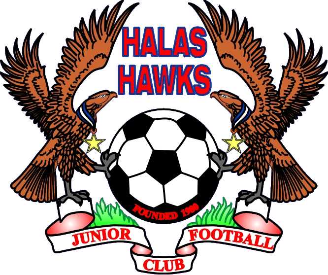 Hawk football clipart graphic freeuse download Halas Hawks Junior Football Club | Dudley Community Information ... graphic freeuse download