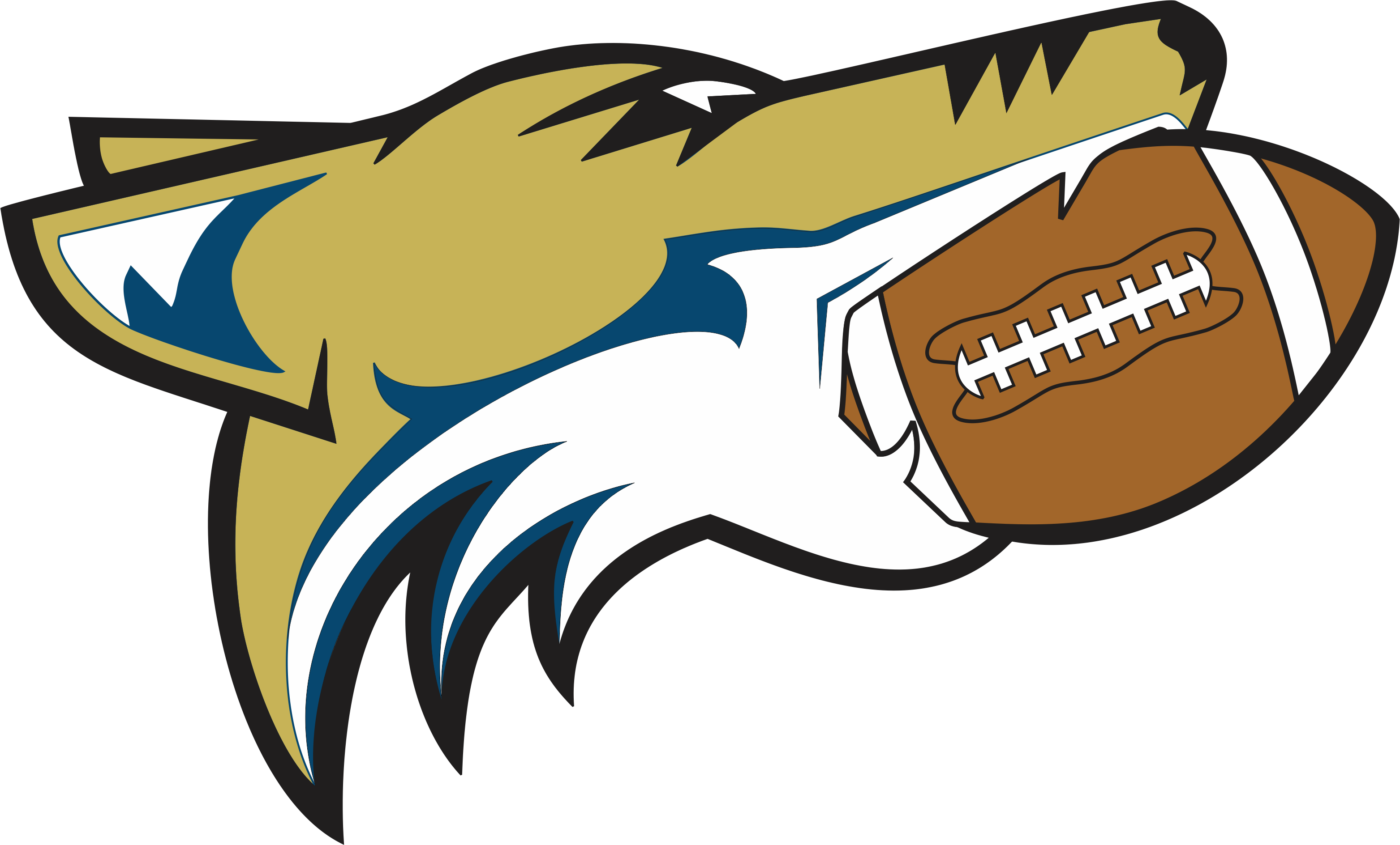 Hawk football clipart picture stock About The Hawks picture stock