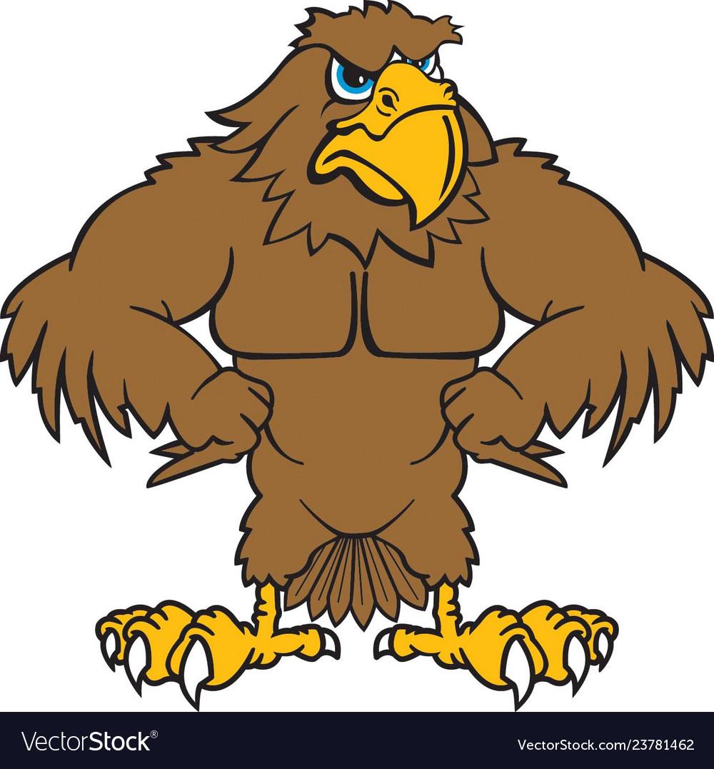 Hawk mascot clipart svg library download Hawk logo mascot svg library download
