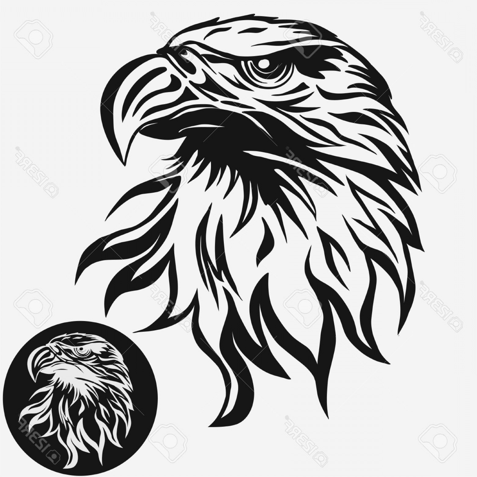 Hawk mascot clipart image black and white stock Photostock Vector Eagle Head Logo Template Hawk Mascot Graphic ... image black and white stock