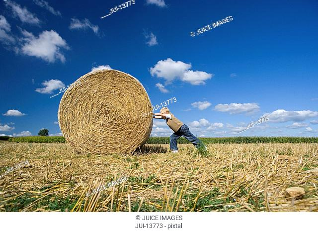 Hay barrel clipart at a left angle svg library download Heavy hay bale Stock Photos and Images | age fotostock svg library download