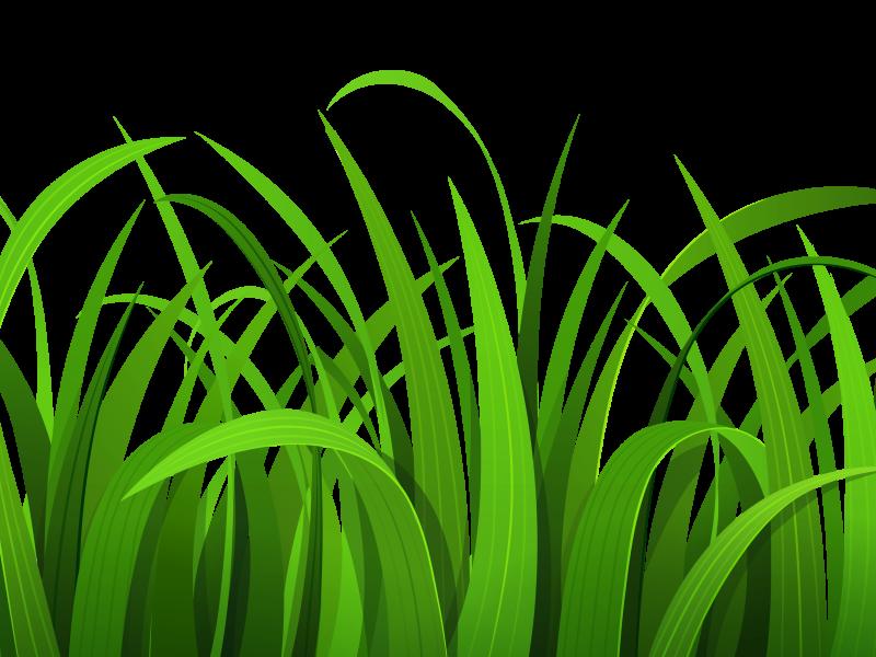 Grass hd clipart clip art free download Grass Clipart Hd Wallpaper | Clipart Panda - Free Clipart Images clip art free download