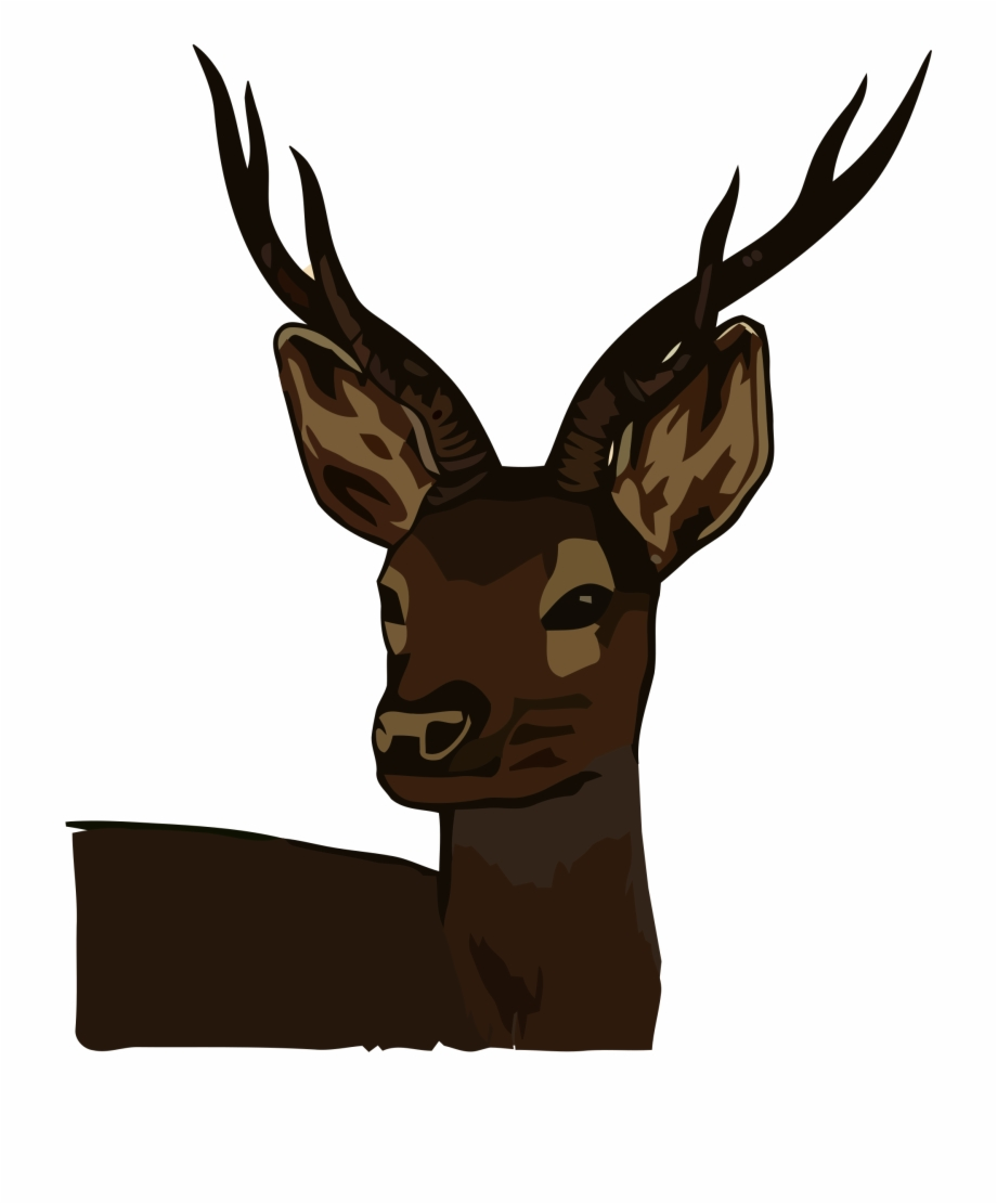 Head and brain and deer hunting clipart png black and white 1528966199 Deer Head Clipart - Roe Deer Free PNG Images & Clipart ... png black and white