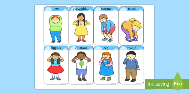 Head and shoulders knees and toes clipart clip library Heads, Shoulders, Knees and Toes Flashcards Welsh - pen ysgwyddau ... clip library