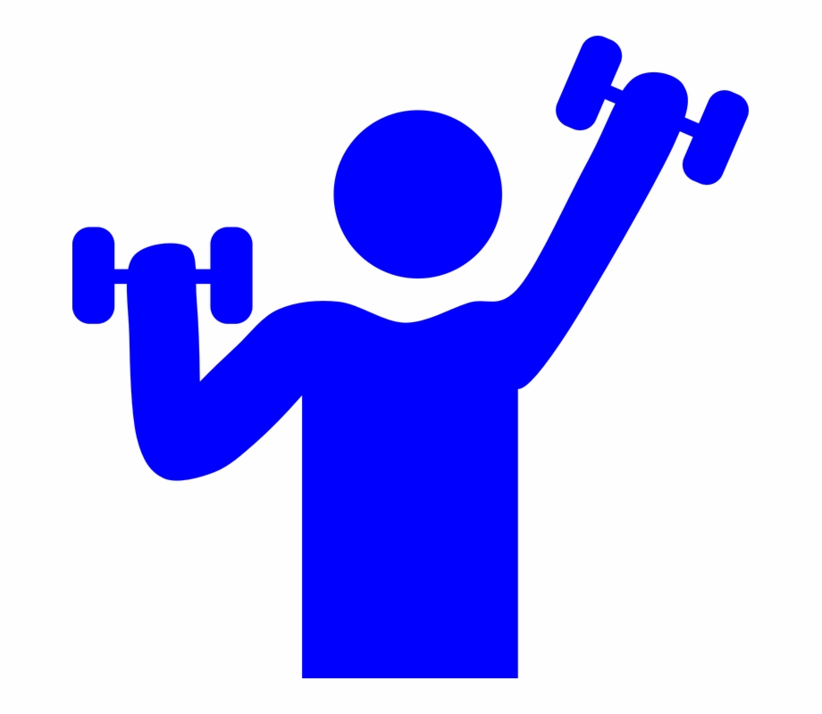Health and fitness clipart free clip royalty free stock Health And Fitness Gym Weight Lifting Muscle - Gym Clip Art Free PNG ... clip royalty free stock