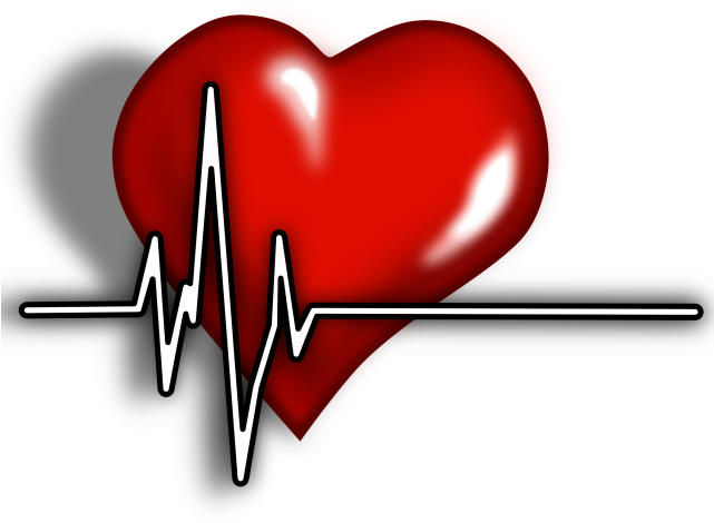 Healthy heart clipart free svg free stock Image Royalty Free Library Healthy Heart Clipart - Cardiac ... svg free stock