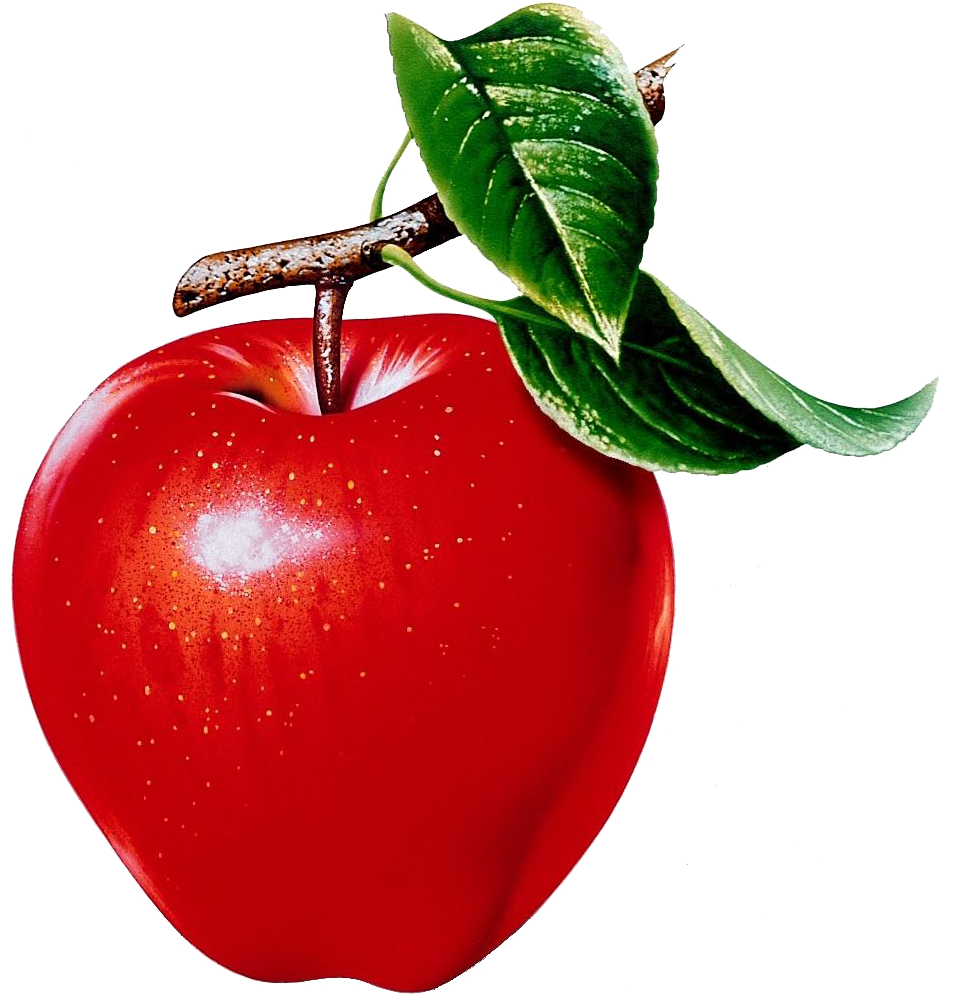 Healthy living apple clipart clip art freeuse download Pin by Мира Французова on Ам?! | Pinterest | Rubrics clip art freeuse download