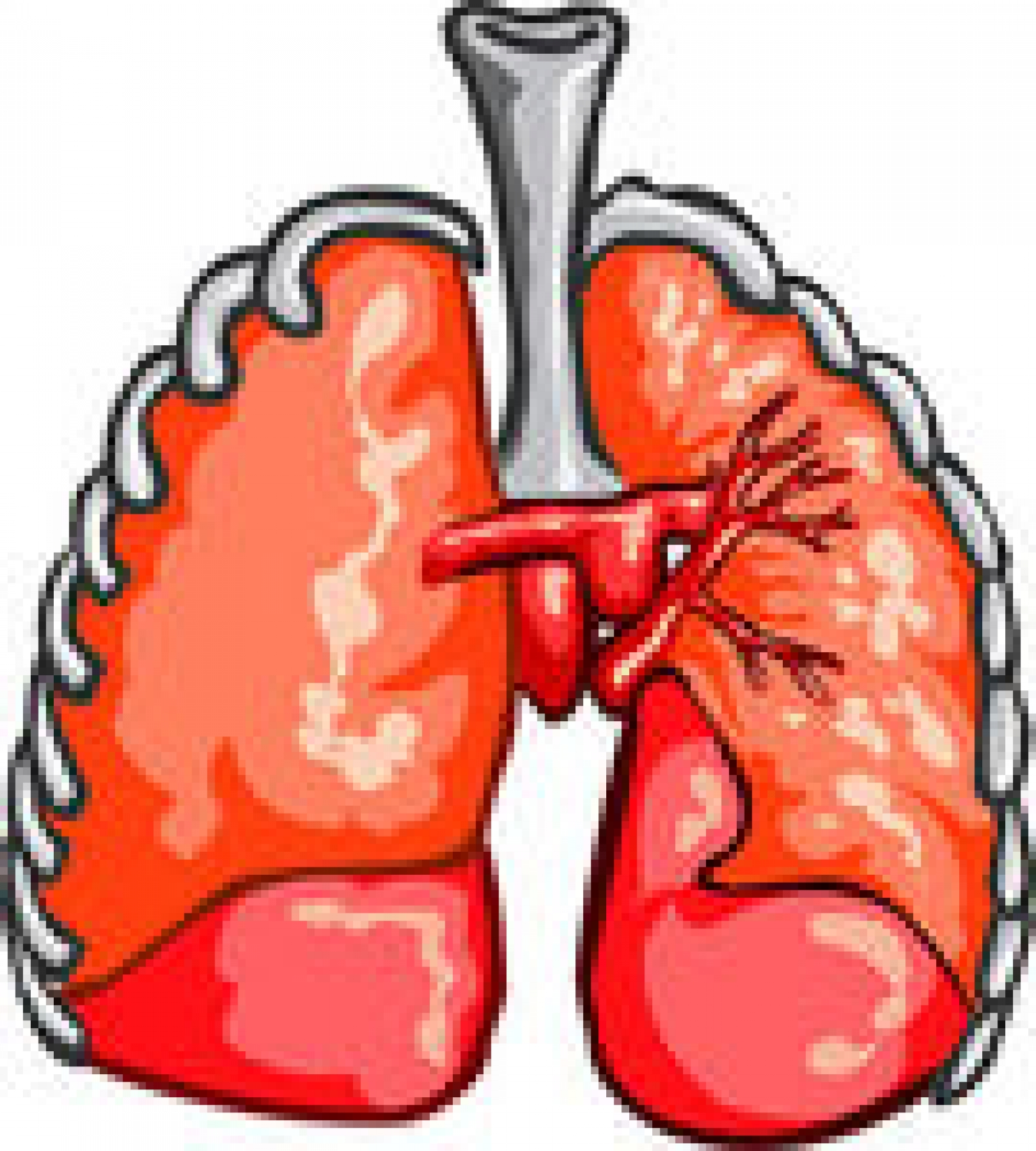 Healthy lungs clipart jpg black and white library Lung Clipart | Free download best Lung Clipart on ClipArtMag.com jpg black and white library