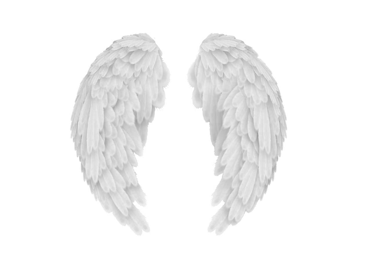 Heart and angel wings clipart vector royalty free stock Wings PNG images free download, angel wings PNG vector royalty free stock
