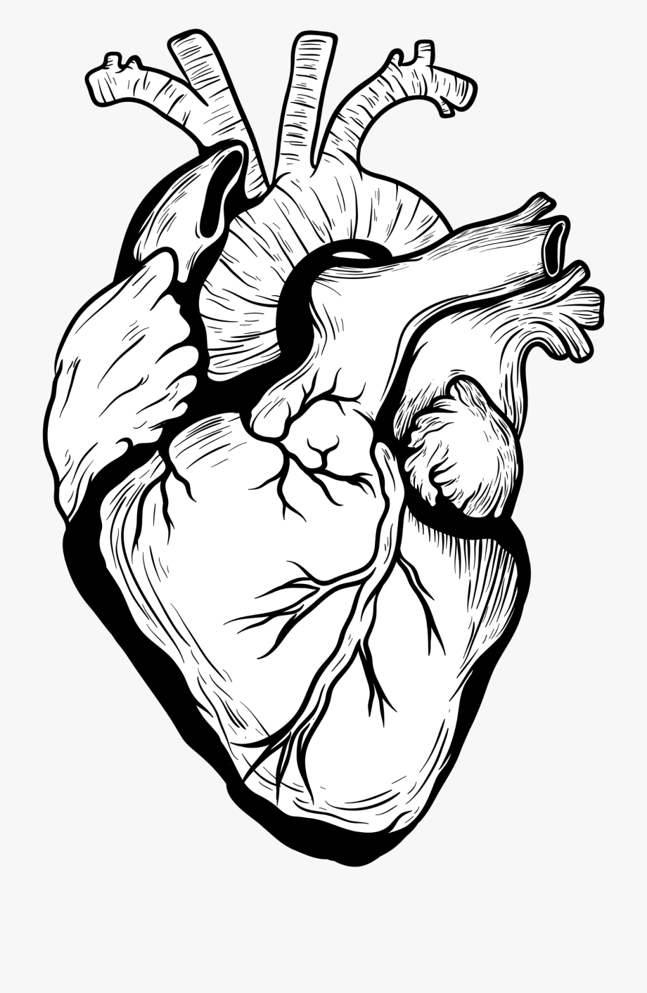 Heart and hand and soul clipart svg royalty free download Collection Of Free Finger Drawing Heart Download On - Real ... svg royalty free download