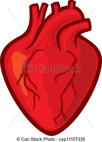 Heart artwork clipart graphic royalty free Human Heart Clip Art & Human Heart Clip Art Clip Art Images ... graphic royalty free