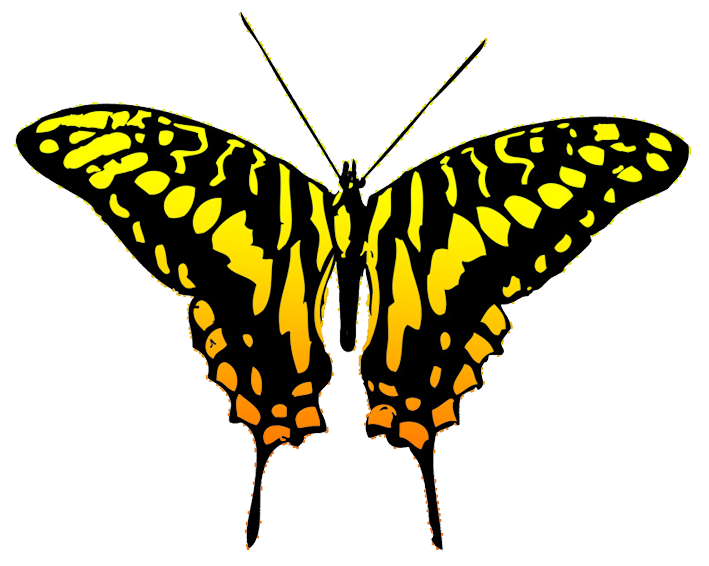 Heart butterfly clipart clip art freeuse library Butterfly Clipart clip art freeuse library