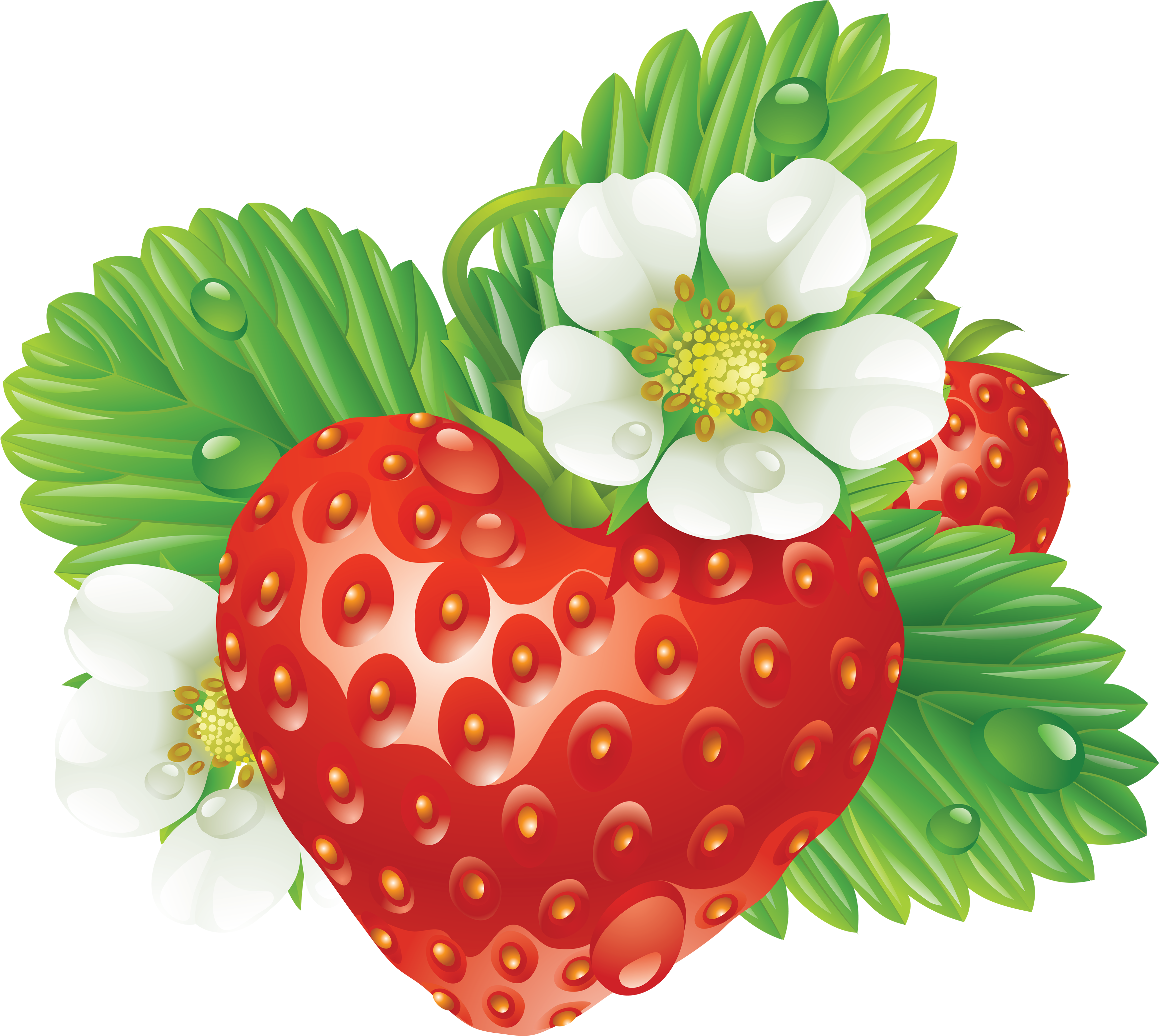 Heart shaped strawberry clipart jpg library stock Strawberry Heart-Shaped PNG Image - PurePNG | Free transparent CC0 ... jpg library stock